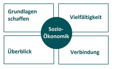 Was bietet Sozio-Ökonomik?